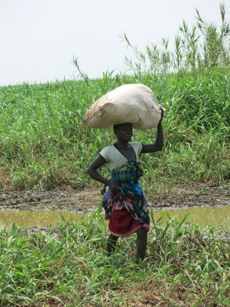 The women here were just amazing. Baby on back, maize on head, need deep in mud and still smiling.