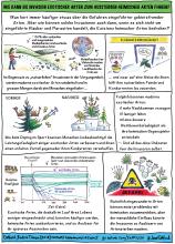 Catford et al cartoon_German_TH