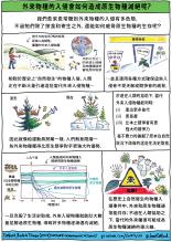 Catford et al cartoon_Mandarin