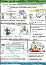Catford et al cartoon_Spanish
